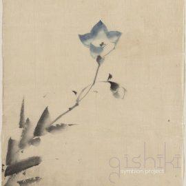 SYMBION PROJECT – Gishiki